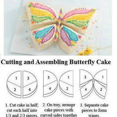 Cutting and Assembling Butterfly Cake <3