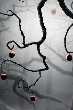 snow white apple trees travel photos, fairytale art, disney art, trees, inspir, apples, tree branches, forbidden fruit, snow white