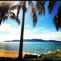 Tropical view #townsvilleshines
