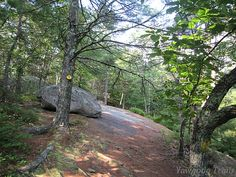 Devil's Slide on the Aline Buxton branch of the Yellow Trail at Camp Yawgoog, Rockville, Hopkinton, Rhode Island (RI).  A 2014 image by David R. Brierley.
