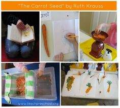 """The Carrot Seed"" and activities... classroom idea, explor carrot, garden plant, plant eco, carrots, preschool idea, the carrot seed activities"