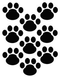 DOG PAW PRINTS wall decals baby nursery kids room by decampstudios