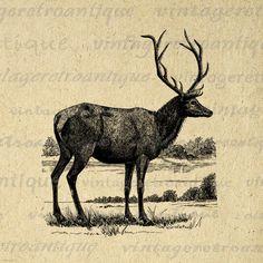 Digital Antique Elk Printable Download by VintageRetroAntique, $3.50