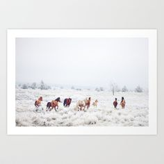 Winter Horses Art Print by Kevin Russ - $16.00