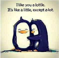 Penguin love Smile Quotes, Lottle, Remember This, Penguins Love, Quotes Boards, Life Sayings, Baby Wall, Things, Love Qu...