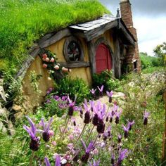 This will be mine one day! cottag, hobbit hole, dream, newzealand, hobbit houses, hobbithous, place, garden, new zealand