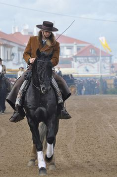 Black Lusitano Stallion at Golegã.