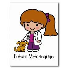 Become a veterinarian