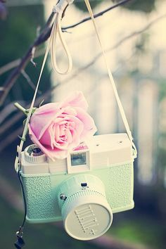 cute camera and cute color