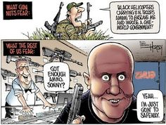 The gun control debate in funny pictures...