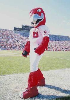 Miami University RedHawks costumed mascot - Swoop