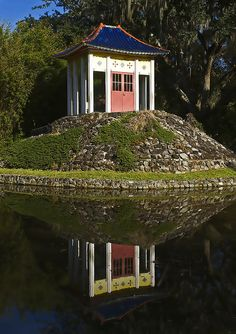Avery Island by Darlene Boucher