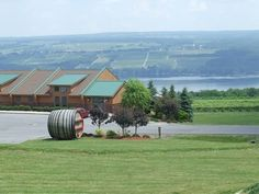 Glenora Wine Cellars (Seneca Lake)