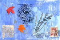 Illustrations by Liz Kalloch art studios, creat explor, explor discov, liz kalloch