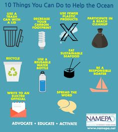 10 things you can do to help the ocean!