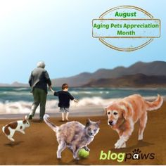 5 Most Popular BlogPaws Stories of the Week - BlogPaws