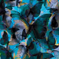 """a butterfly called """"Morpho"""""""