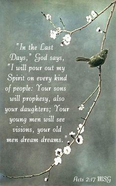 faith, jesus christ, bibl scriptur, 217, inspir christian, christian quot, birds, blossom, bibl vers