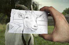 Photograph of a drawing of a photograph, by Ben Heine.