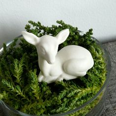 Terrarium Fawn now featured on Fab.