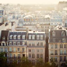 Paris Rooftops by Irene Suchocki