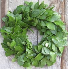 2  24 Lemon Leaf Wreaths  Dried Flowers by andreabeitzel on Etsy, $41.98