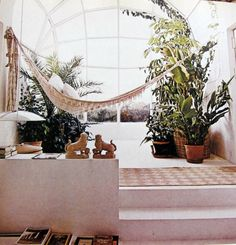 architect, interior, live space, potted plants, hous, inside outside, small space, hammock, sunroom