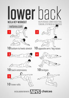 Lower Back Workout / Helps reduce lower back pain, tension, stiffness  soreness.