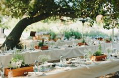 long tables with wood box centerpieces