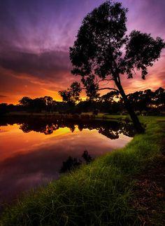 lights, sky, god, orang, tree, colors, sunset, sunris, place