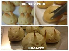 cats, demons, easter, funny bunnies, breads, baking, expectation vs reality, biscuits, bunni rollsexpect