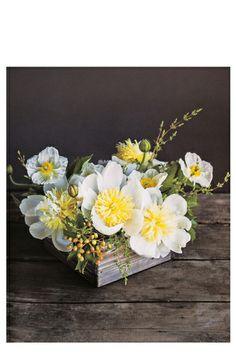 The Flower Recipe Book at Pigment #flowerrecipe #flora #bouquet