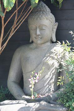 Buddha in nature