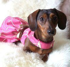 Marci needs this dress!