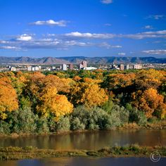 Fall Skyline on the Rio Grande, Albuquerque, NM - MarbleStreetStudio