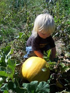 22 Activities for Country Toddlers