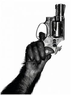 Albert Watson: Monkey with Gun. New York, 1992.