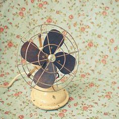 fan & wallpaper