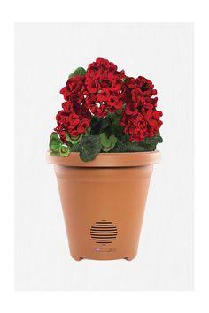 Planter Speaker #urbanoutfitters
