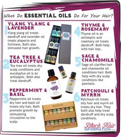 What Do Essential Oils Do For Your Hair? http://www.blackhairinformation.com/our-newsletters/postcard-tips/what-do-essential-oils-do-for-your-hair-bhi-postcard-tips/