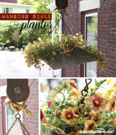 charm, vintage scales, vintage planters, outdoor planter, hang scale, scale planter, diy idea, hanging planters, garden