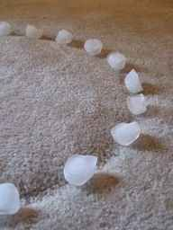 Ice cubes can take indentions out of carpet.