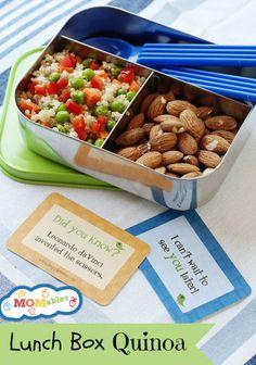 Lunch Box Quinoa - A gluten free lunch idea