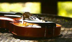 Music -- Fiddle