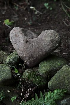 Natural heart shaped stone.