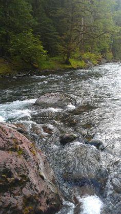 Skokomish River near Lake Cushman & Staircase National Park