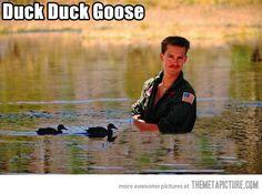 Duck, duck, goose…