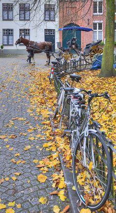 Begijnhof - Brugge, Belgium