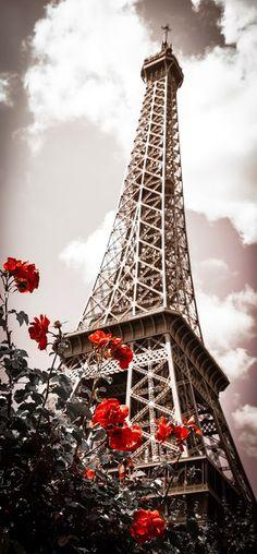 Eiffel Tower in spring!