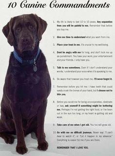 The 10 Canine Commandments... 'Nuff said!